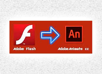 flash vs animate